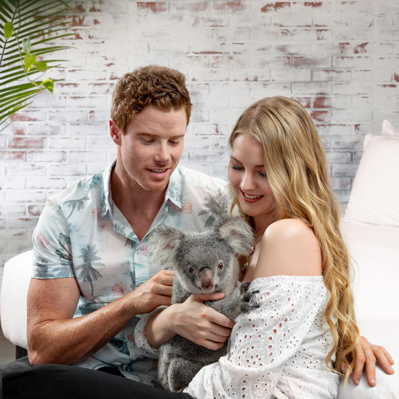 Lifestyle Hotel Photoshoot Queensland Koala by Adrian Kilchherr