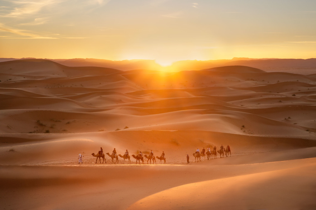 lifestyle photography morocco camels caravan tourism
