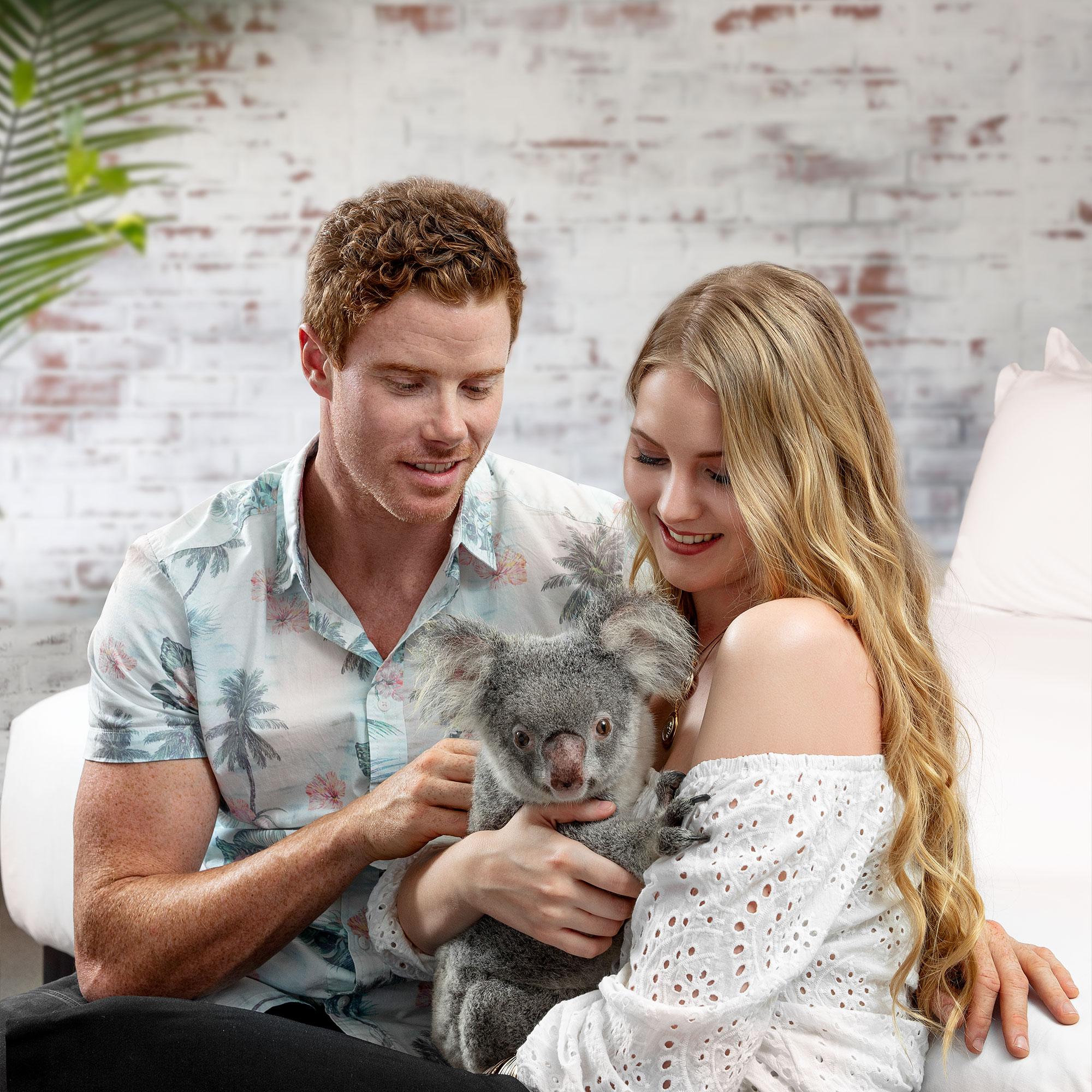 Lifestyle Hotelfotografie Queensland Koala Schweiz Fotograf Adrian Kilchherr